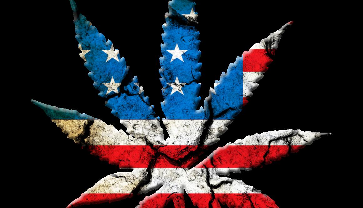 marijuana-leaf-694336_1920
