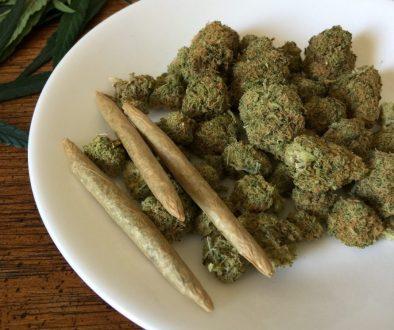 cannabis-1418332_1920