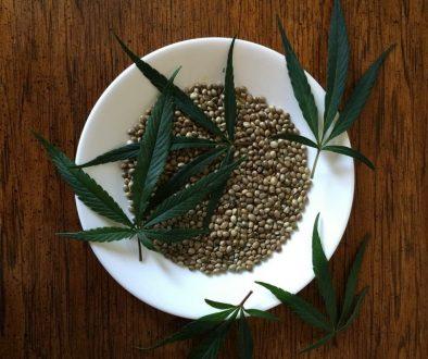 hemp-seeds-1418322_1280