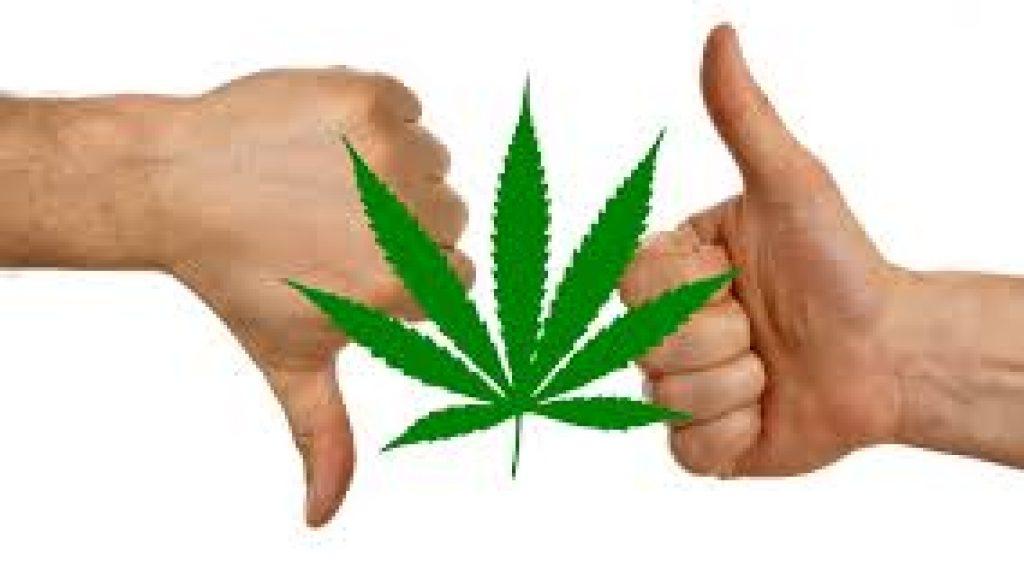 cannabisupdown