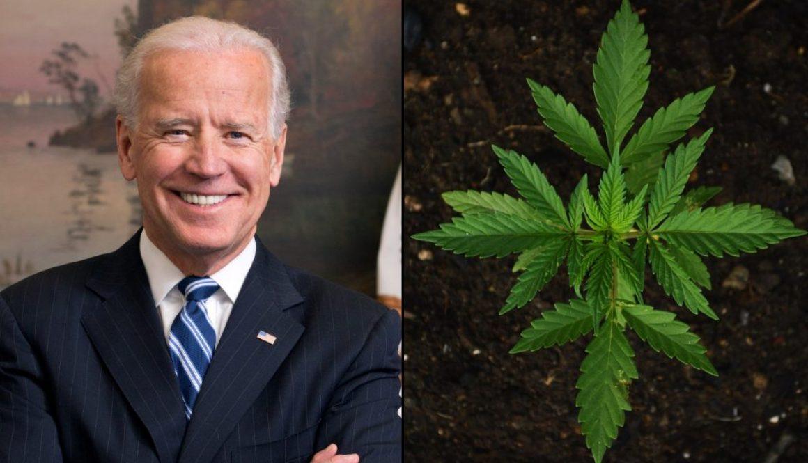 joe-biden-marijuana